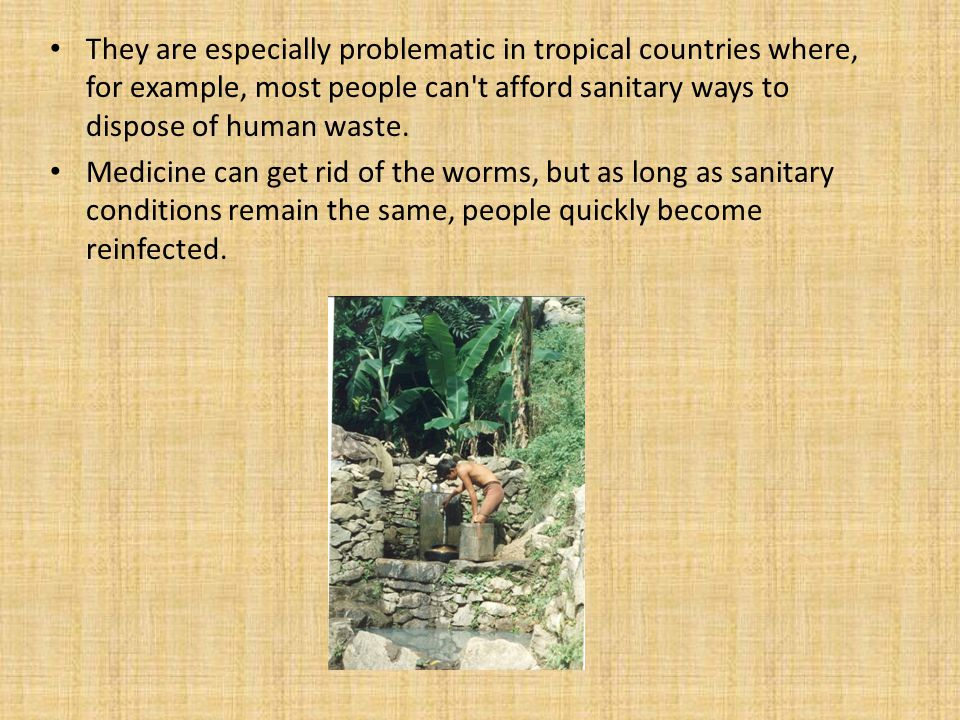 They are especially problematic in tropical countries where, for example, most people can t afford sanitary ways to dispose of human waste.