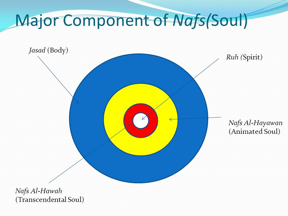 Major Component of Nafs(Soul)