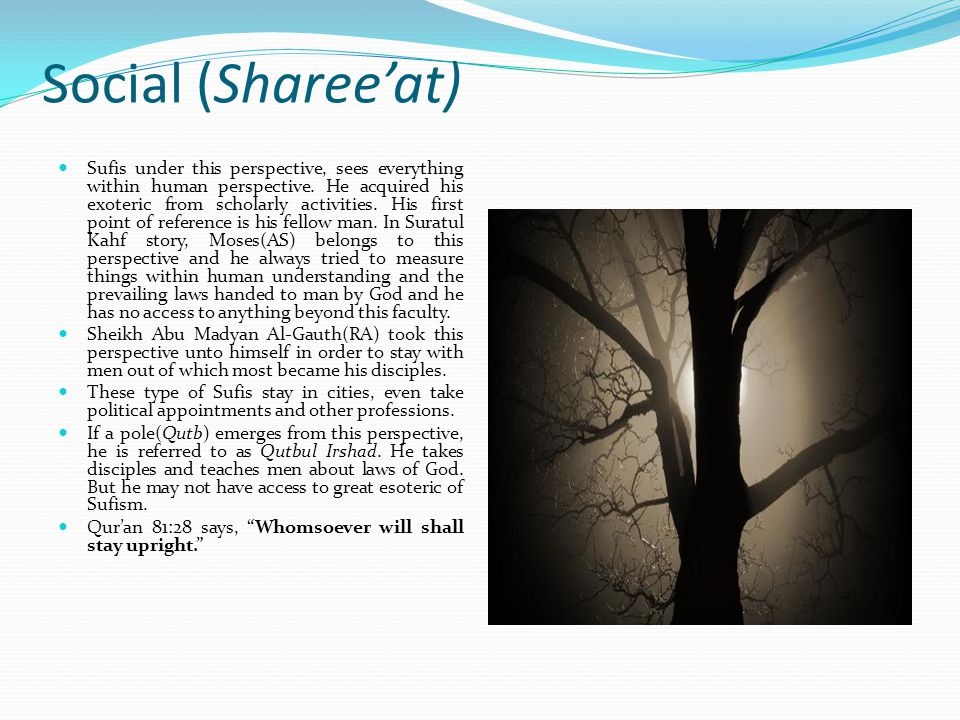 Social (Sharee'at)