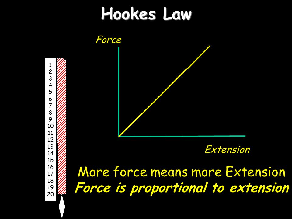 More force means more Extension Force is proportional to extension