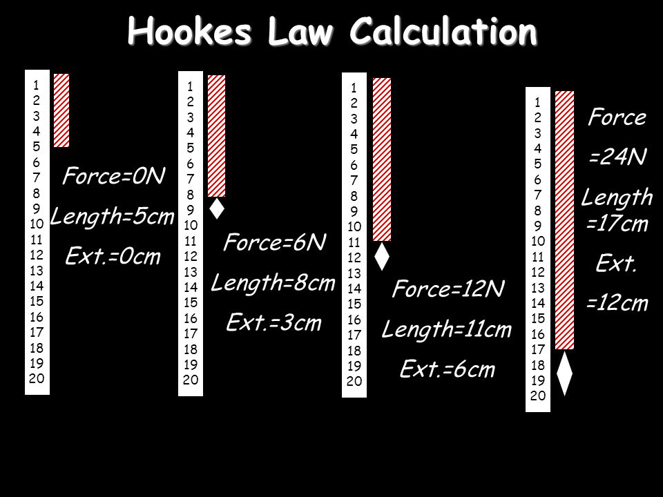 Hookes Law Calculation