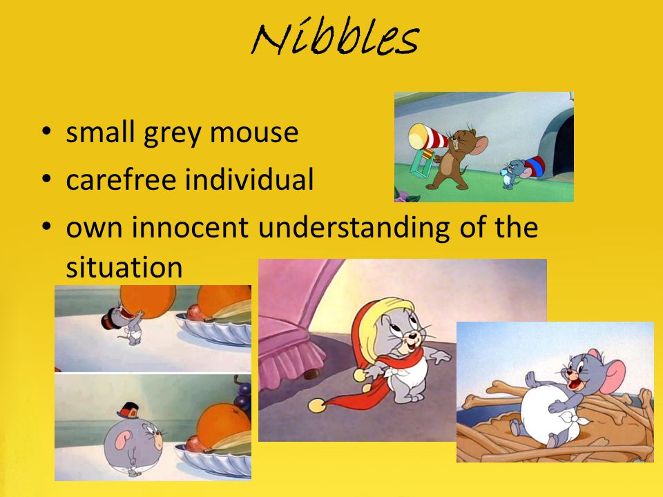 Nibbles small grey mouse carefree individual
