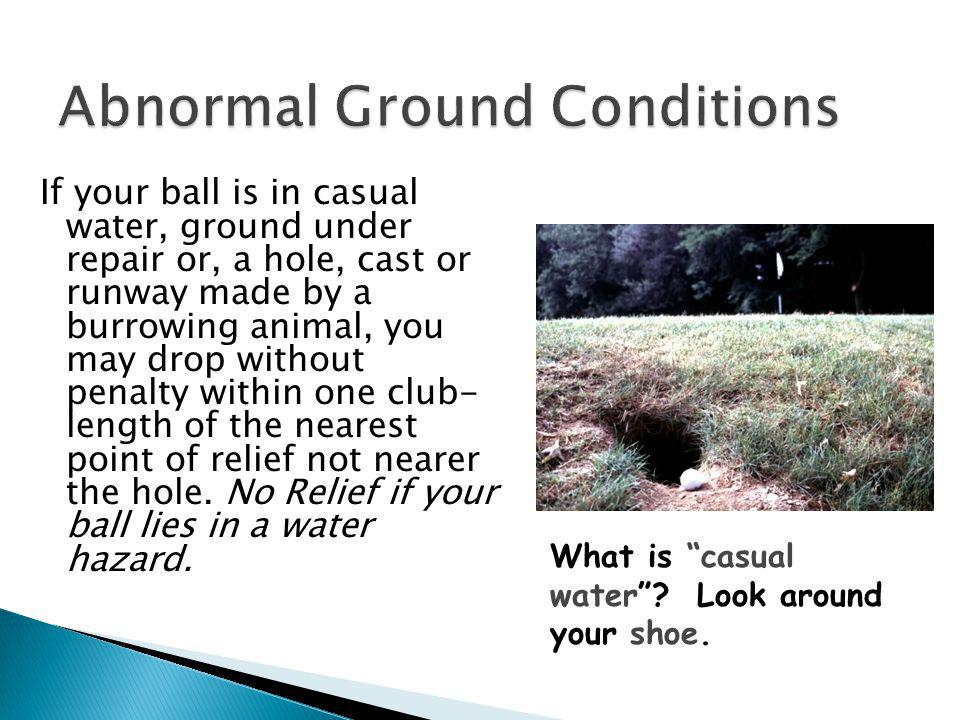 Abnormal Ground Conditions