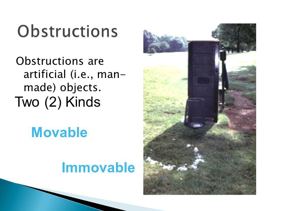 Obstructions Two (2) Kinds Movable Immovable