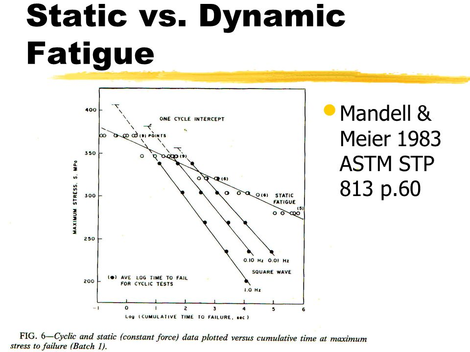 Static vs. Dynamic Fatigue