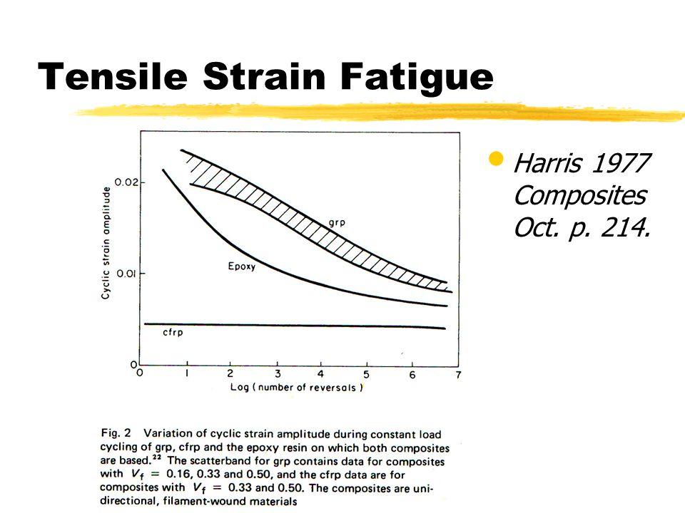 Tensile Strain Fatigue