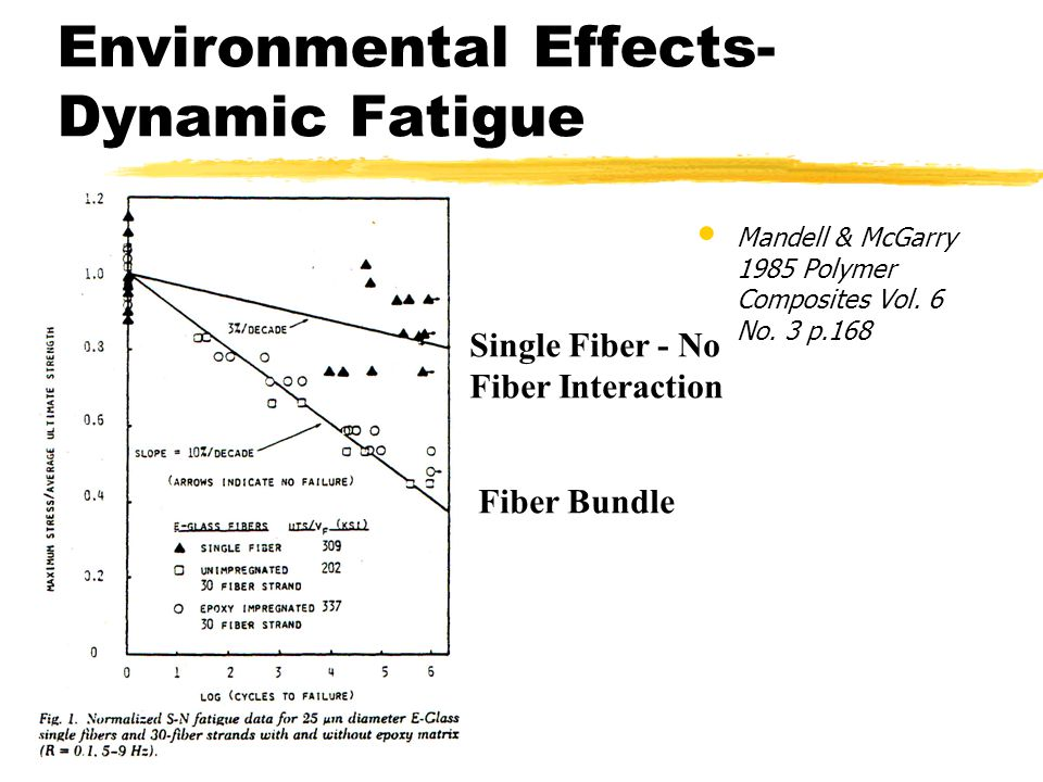 Environmental Effects- Dynamic Fatigue