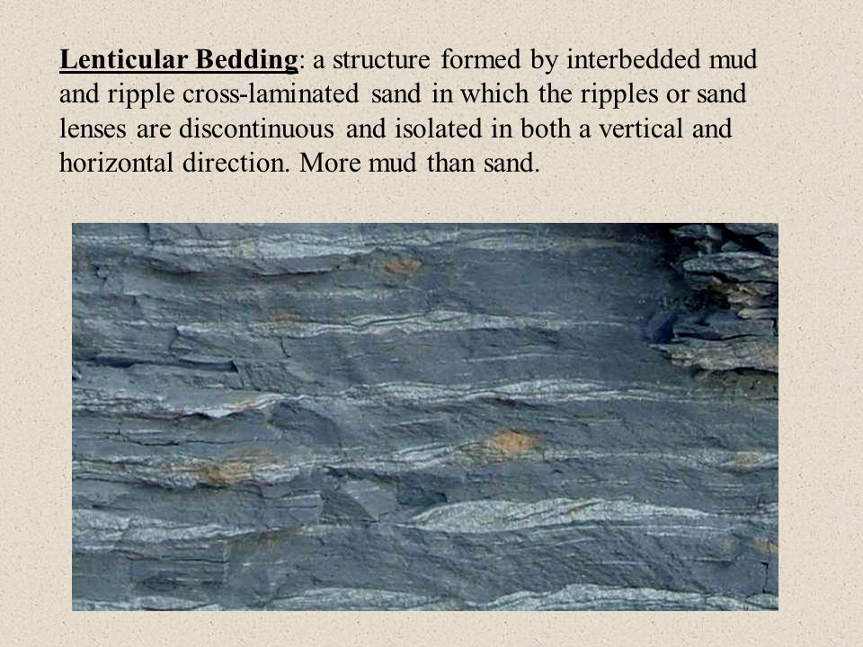 Lenticular Bedding: a structure formed by interbedded mud and ripple cross-laminated sand in which the ripples or sand lenses are discontinuous and isolated in both a vertical and horizontal direction.