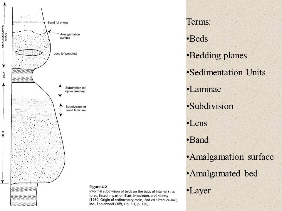 Terms: Beds. Bedding planes. Sedimentation Units. Laminae. Subdivision. Lens. Band. Amalgamation surface.