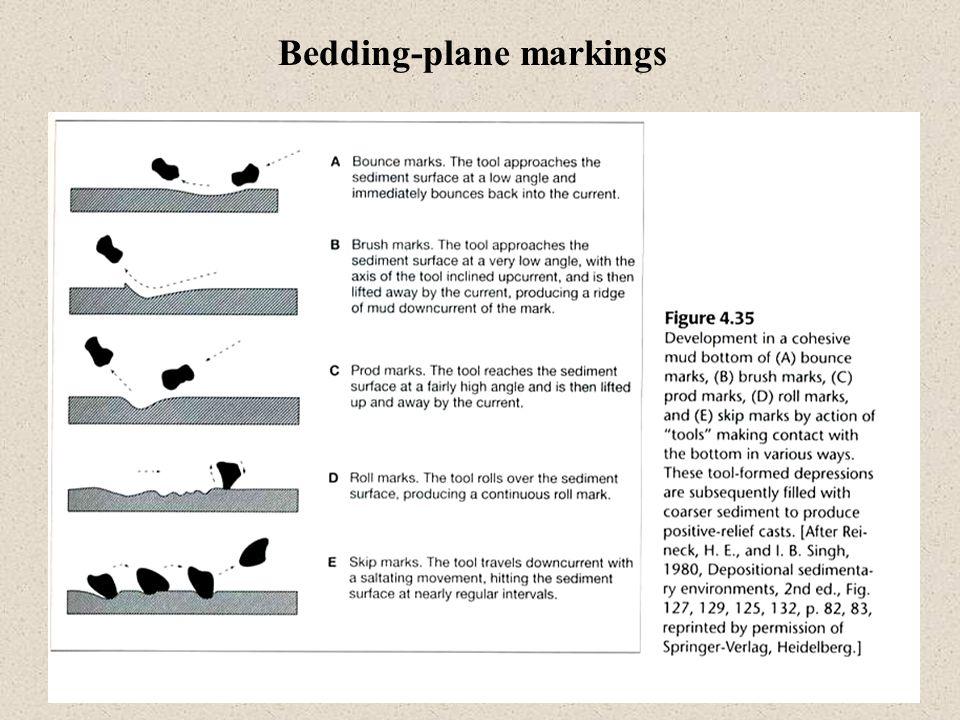Bedding-plane markings