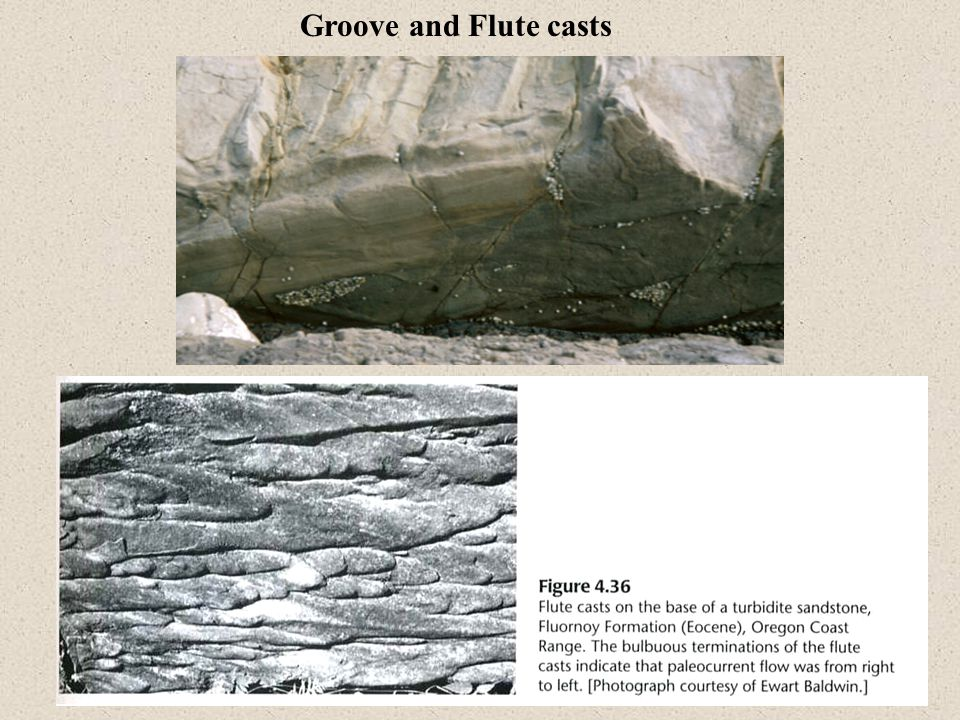Groove and Flute casts