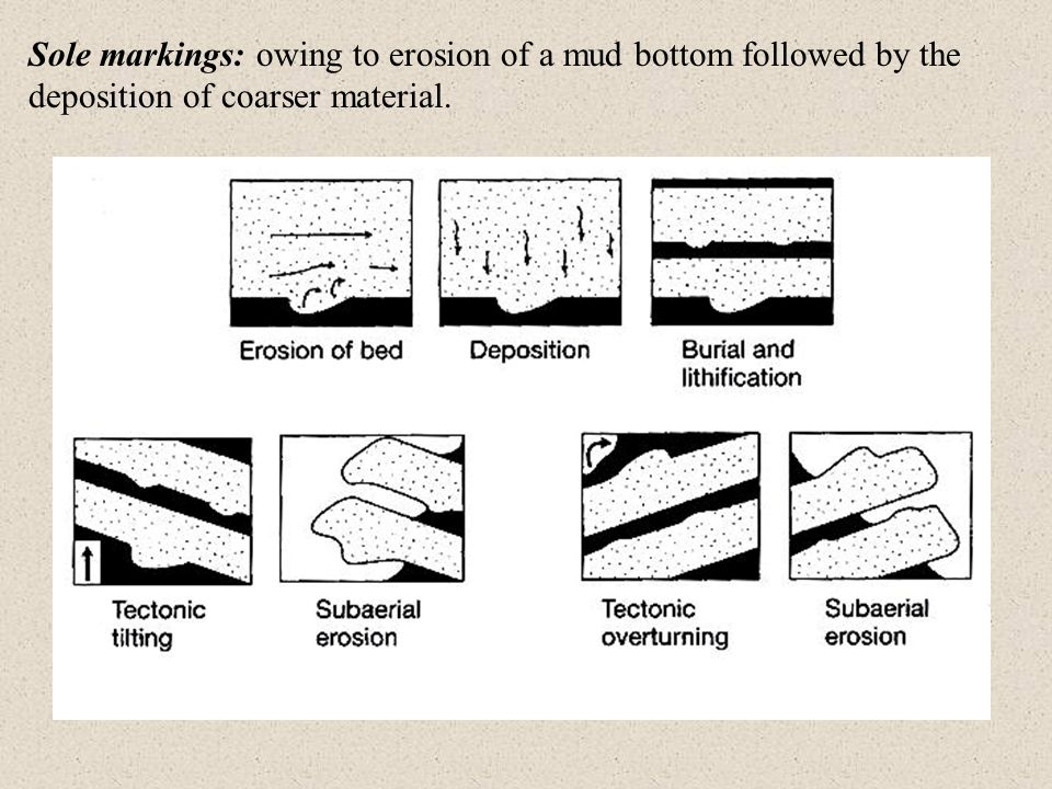 Sole markings: owing to erosion of a mud bottom followed by the deposition of coarser material.