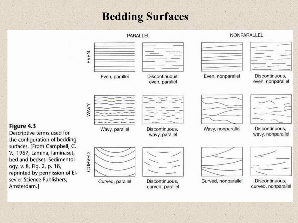 Bedding Surfaces