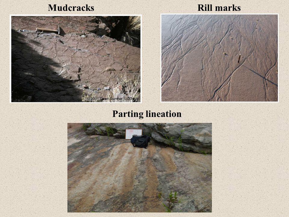 Mudcracks Rill marks Parting lineation