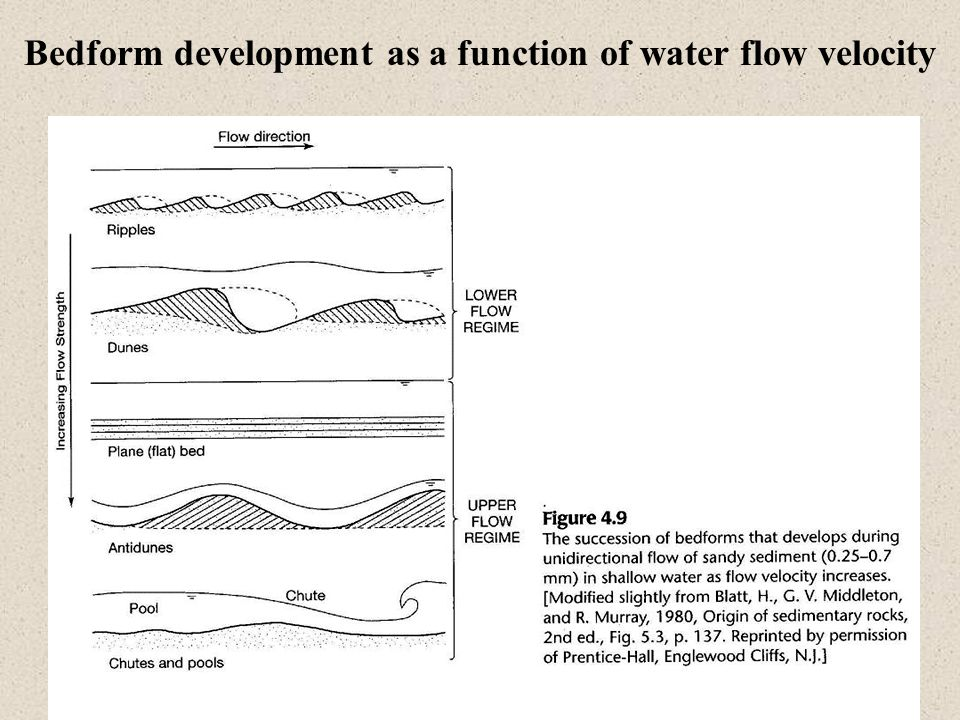 Bedform development as a function of water flow velocity