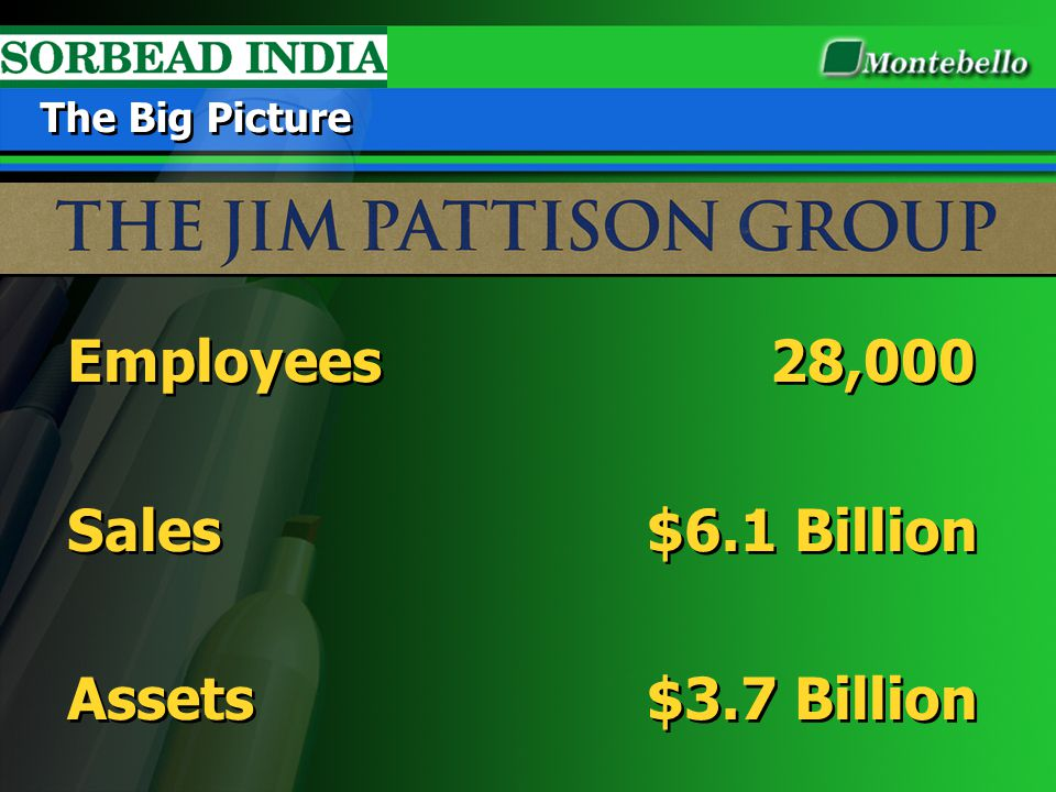 Employees 28,000 Sales $6.1 Billion Assets $3.7 Billion