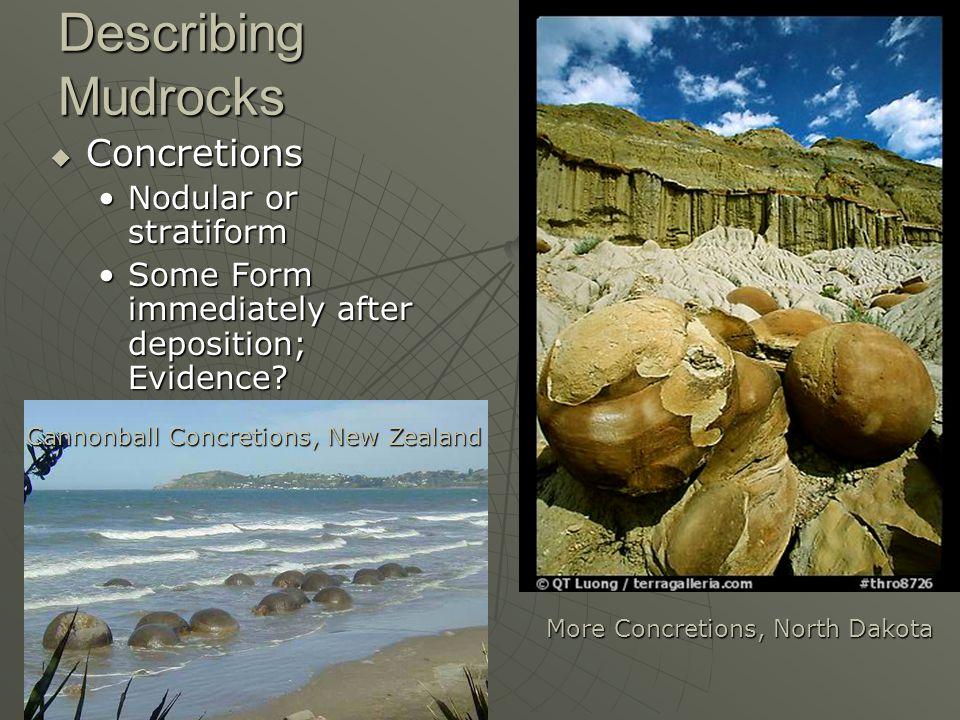 Describing Mudrocks Concretions Nodular or stratiform