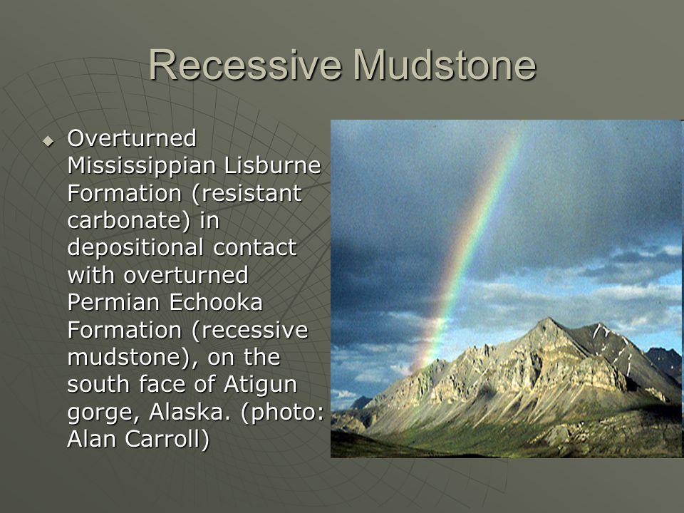 Recessive Mudstone
