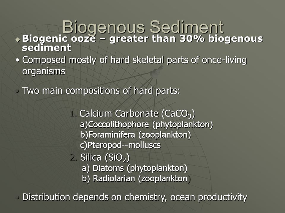 Biogenous Sediment Biogenic ooze – greater than 30% biogenous sediment