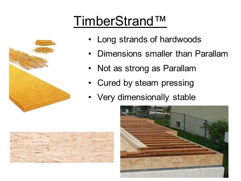 TimberStrand™ Long strands of hardwoods