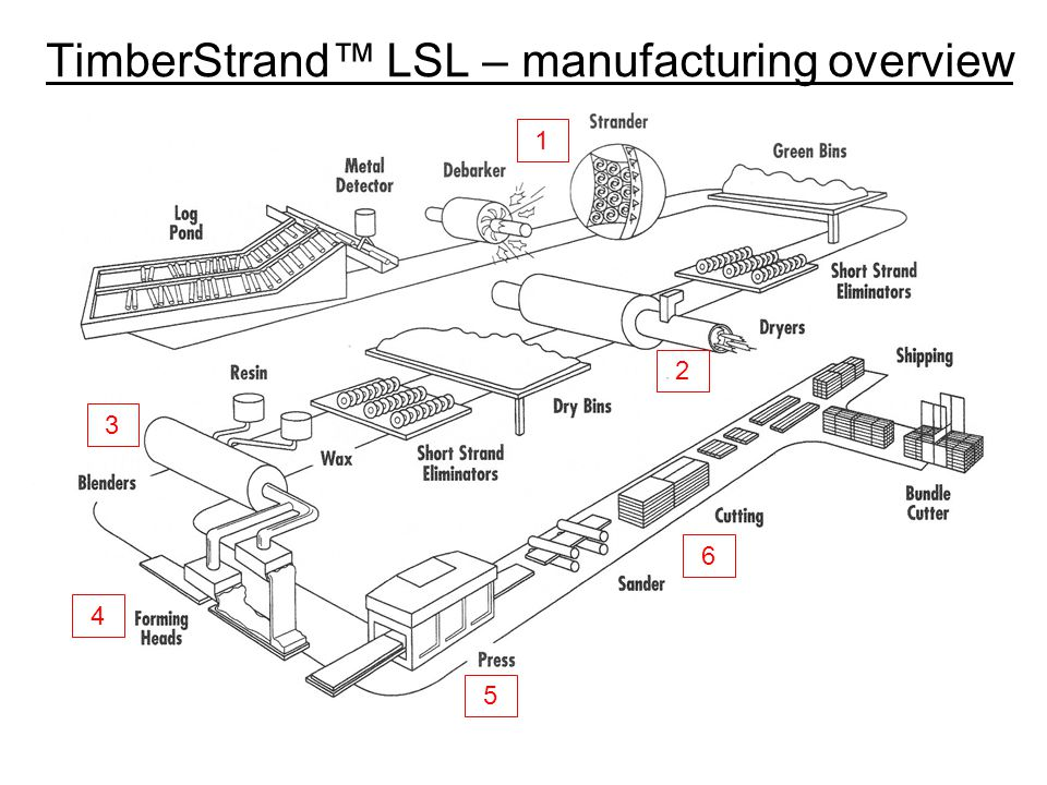 TimberStrand™ LSL – manufacturing overview