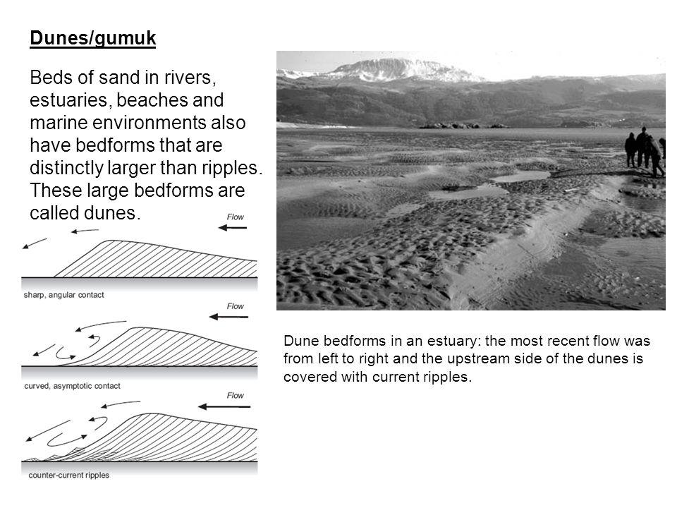 Dunes/gumuk