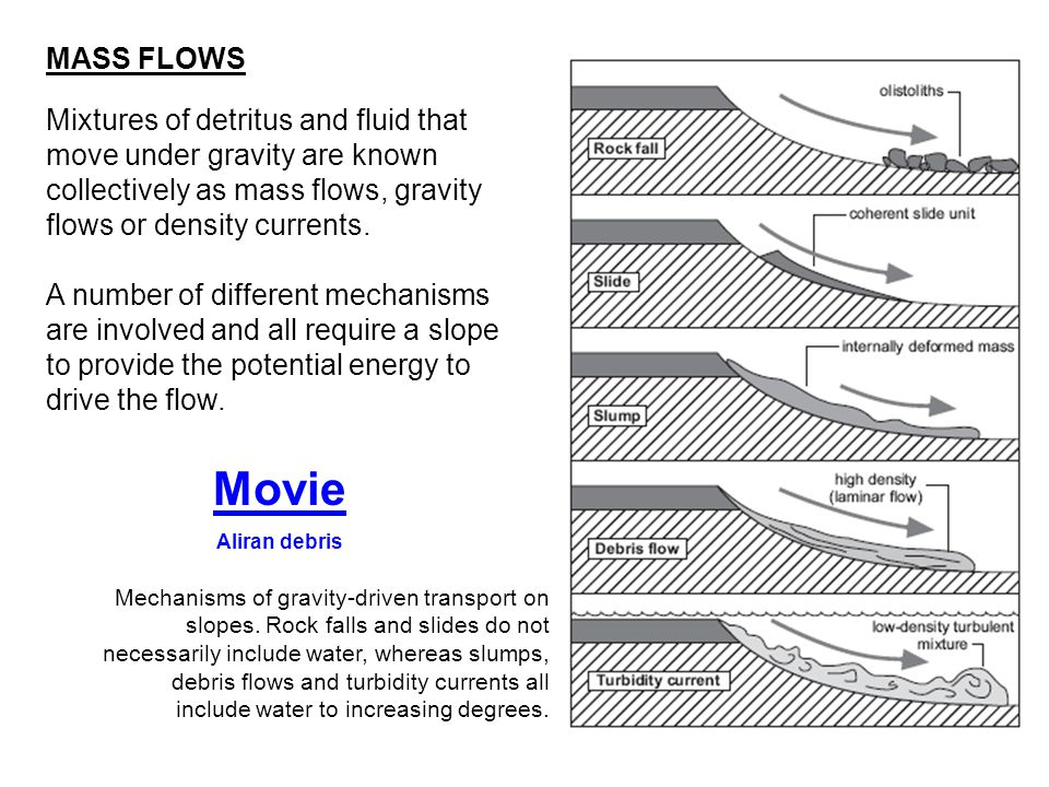 MASS FLOWS Mixtures of detritus and fluid that move under gravity are known collectively as mass flows, gravity flows or density currents.