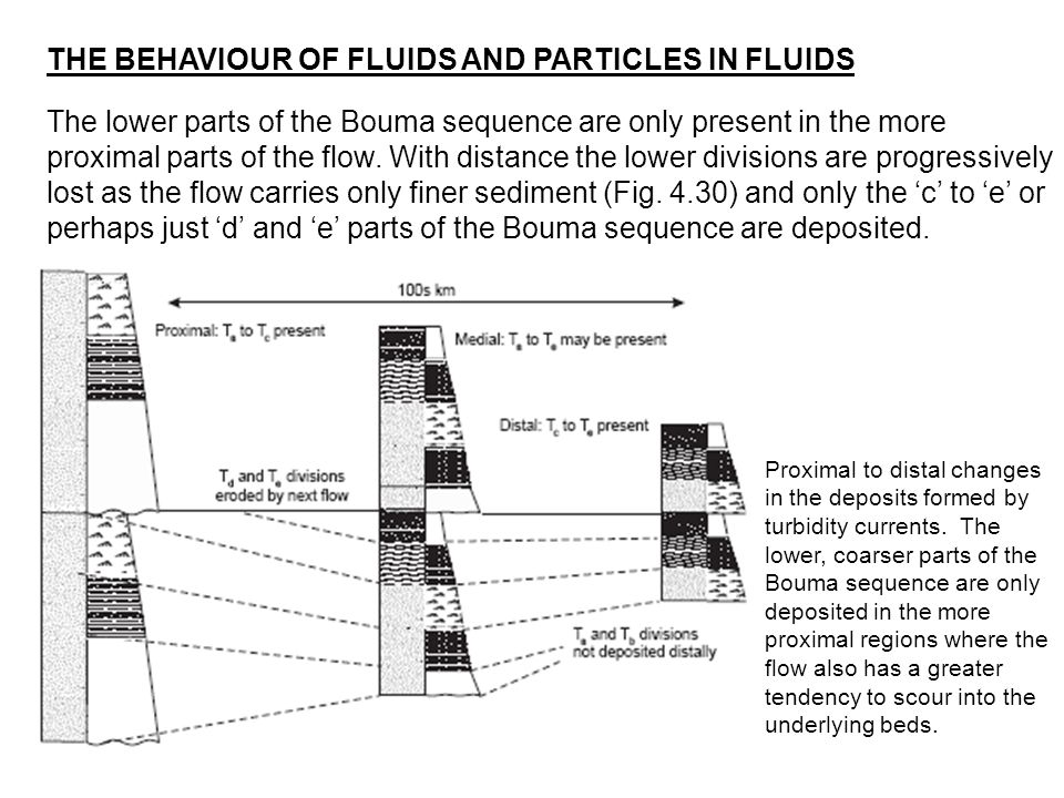 THE BEHAVIOUR OF FLUIDS AND PARTICLES IN FLUIDS
