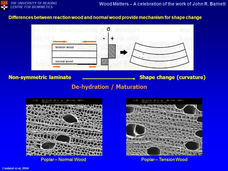 De-hydration / Maturation