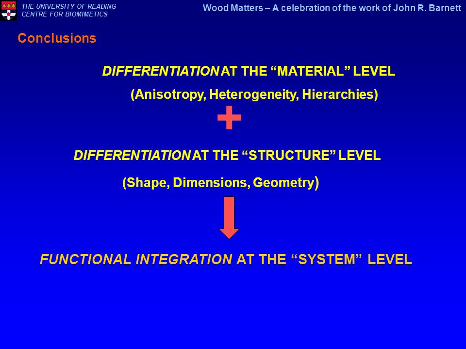 DIFFERENTIATION AT THE STRUCTURE LEVEL