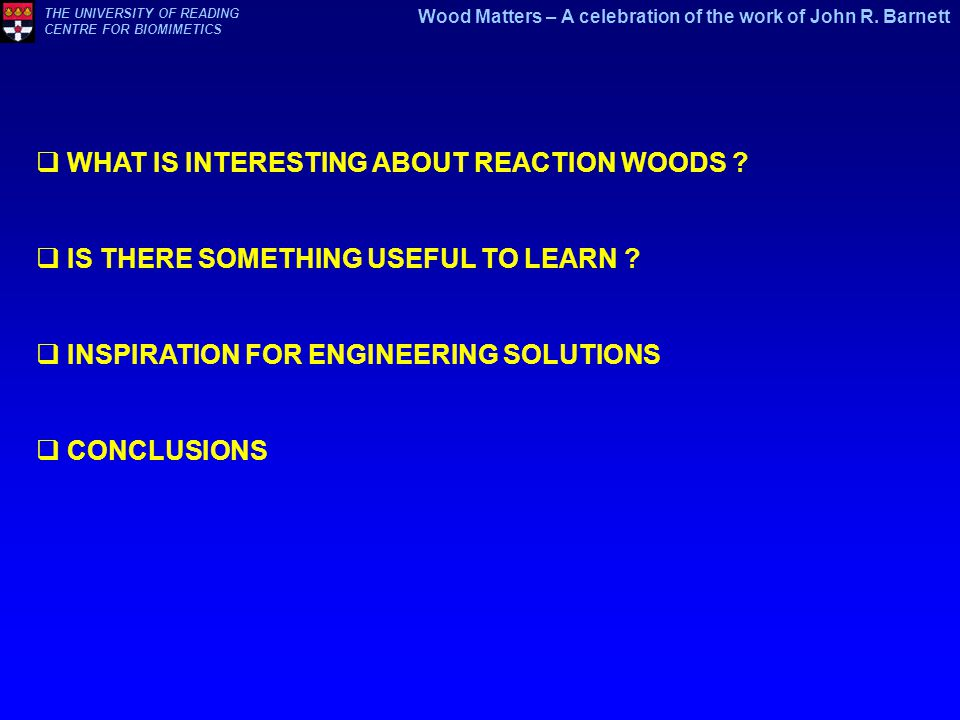 WHAT IS INTERESTING ABOUT REACTION WOODS