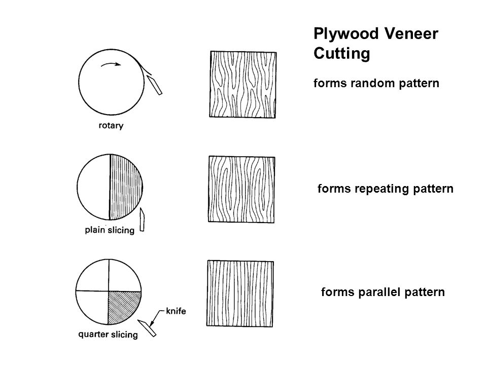 Plywood Veneer Cutting