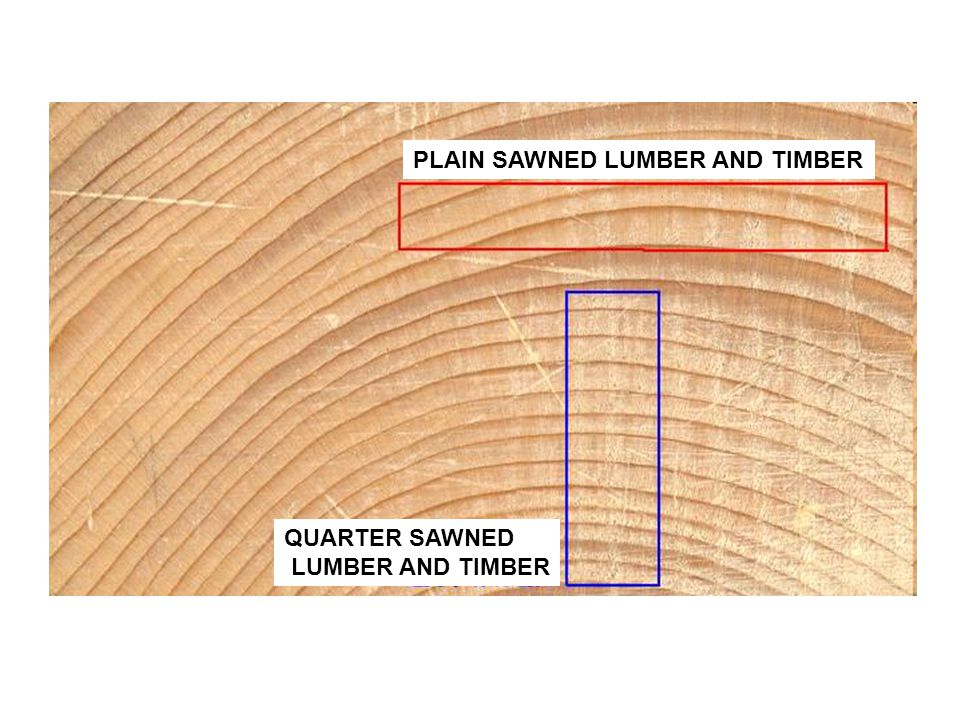 PLAIN SAWNED LUMBER AND TIMBER