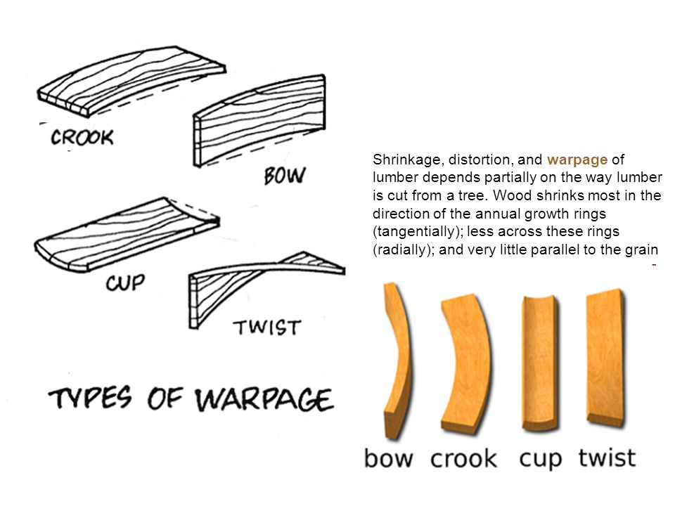 Shrinkage, distortion, and warpage of lumber depends partially on the way lumber is cut from a tree.