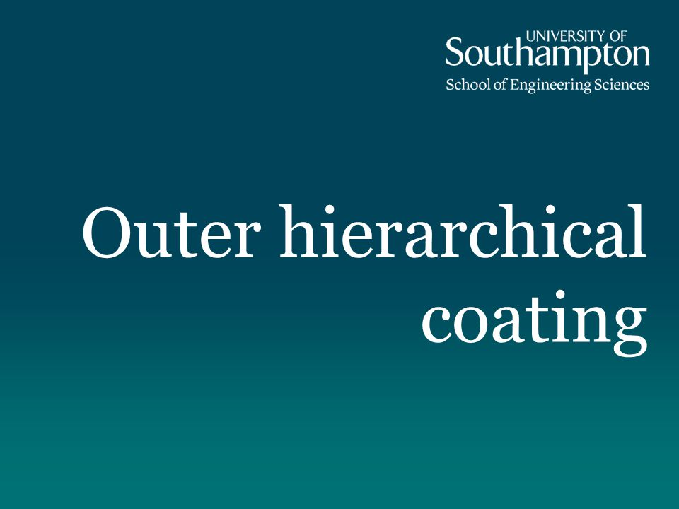 Outer hierarchical coating