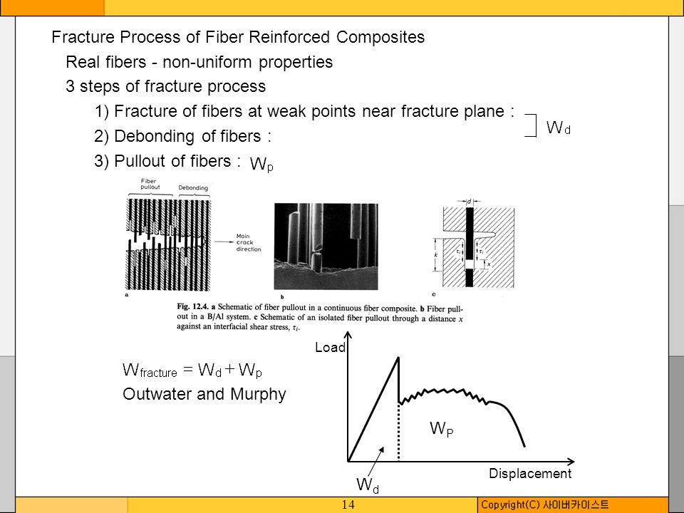 Fracture Process of Fiber Reinforced Composites