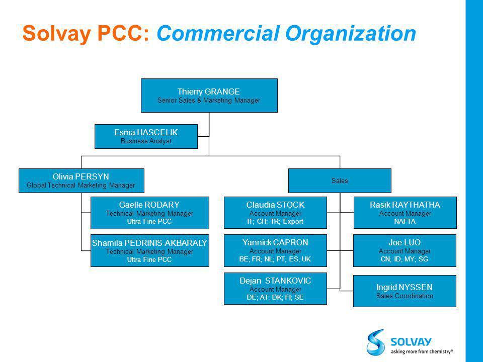 Solvay PCC: Commercial Organization