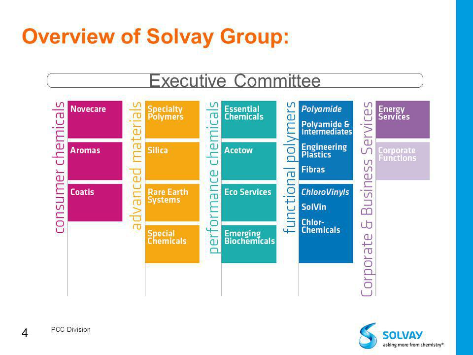 Overview of Solvay Group: