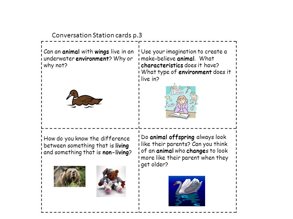 Conversation Station cards p.3