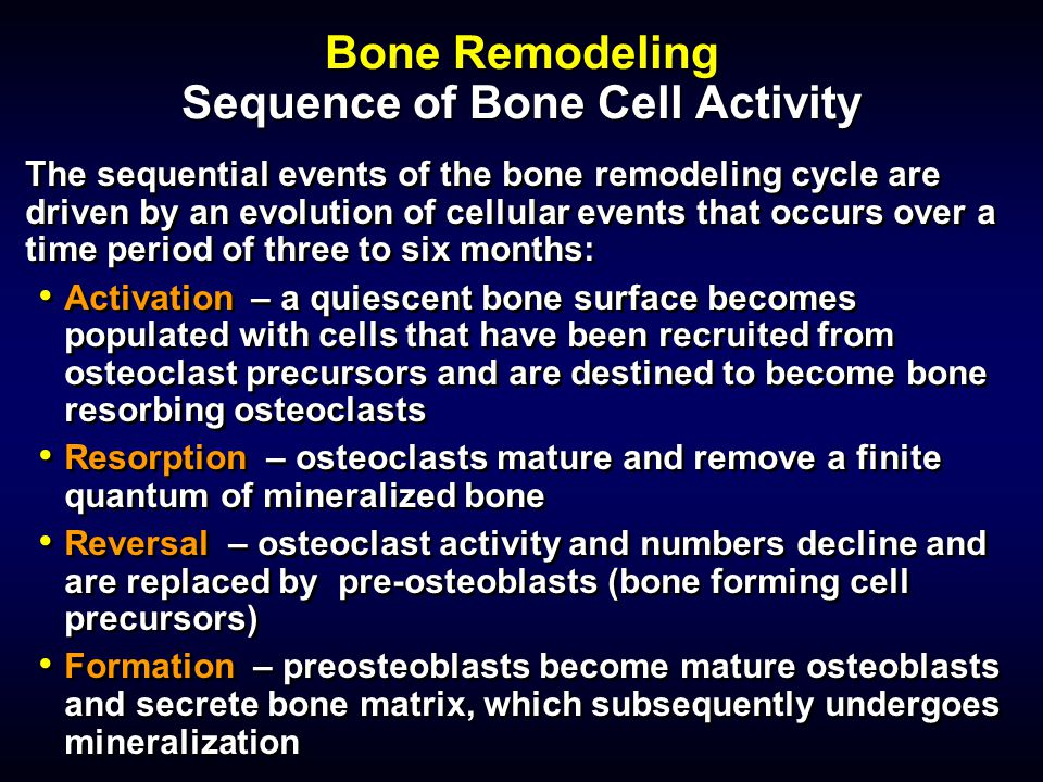 Bone Remodeling Sequence of Bone Cell Activity