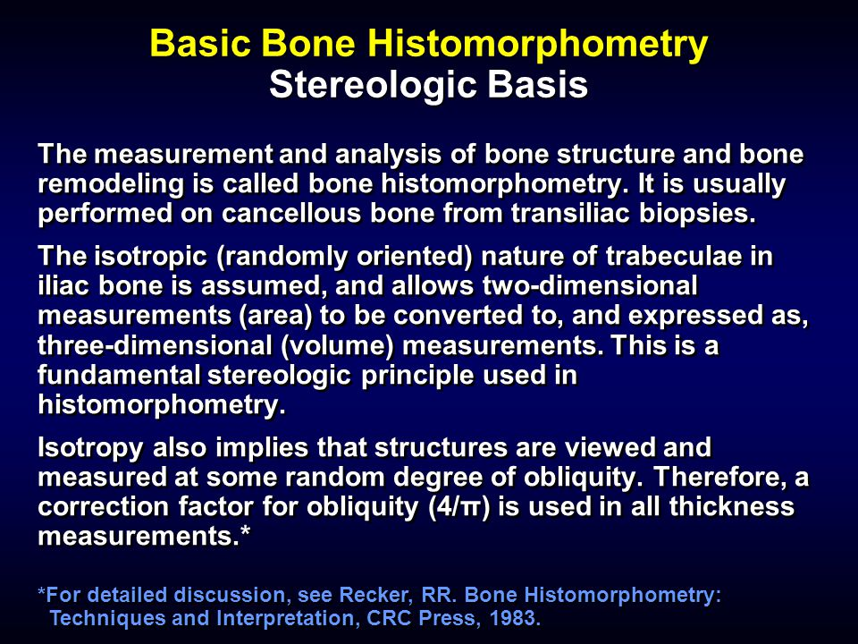 Basic Bone Histomorphometry Stereologic Basis