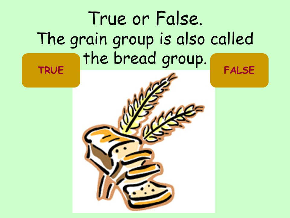 True or False. The grain group is also called the bread group.