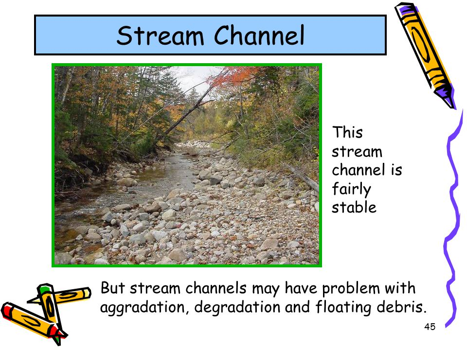 Stream Channel This stream channel is fairly stable
