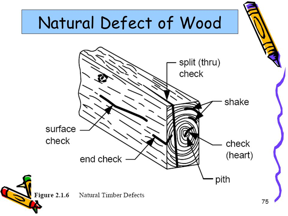 Natural Defect of Wood