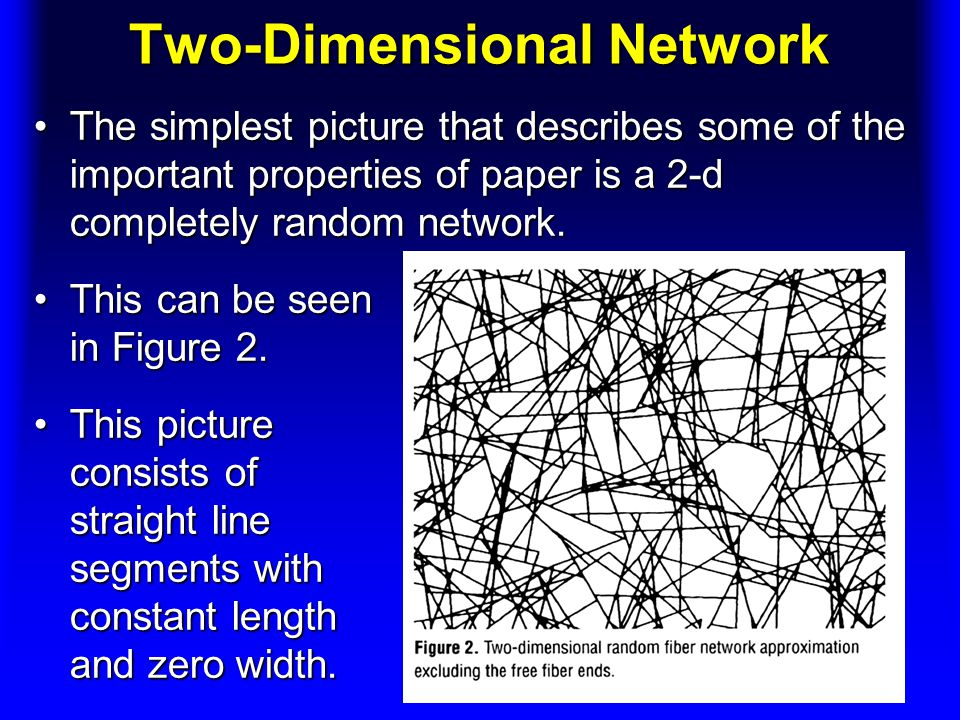 Two-Dimensional Network