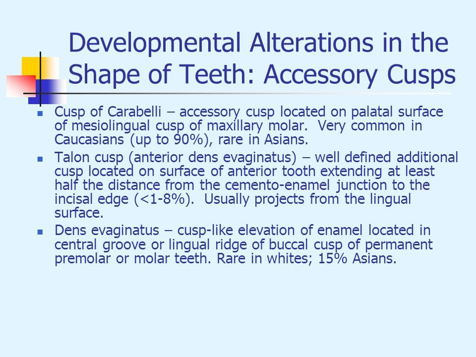 Developmental Alterations in the Shape of Teeth: Accessory Cusps