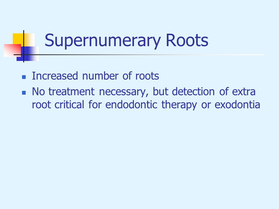 Supernumerary Roots Increased number of roots