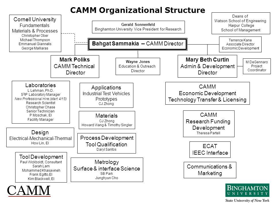 CAMM Organizational Structure