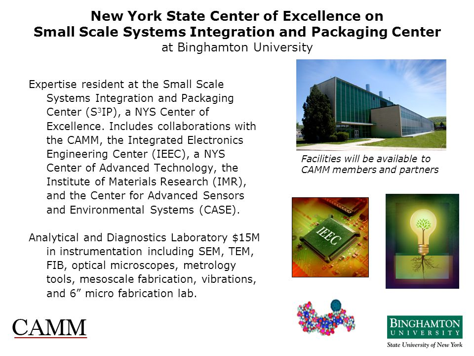 New York State Center of Excellence on Small Scale Systems Integration and Packaging Center at Binghamton University