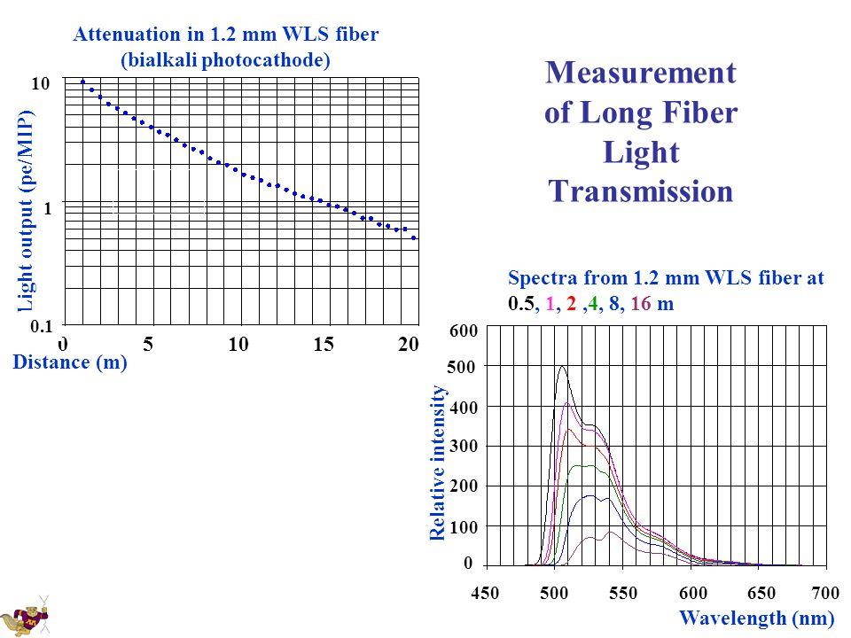 Measurement of Long Fiber Light Transmission